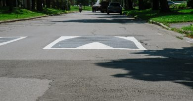 This 3D traffic calming measure is significantly less expensive than traditional humps. Photo submitted