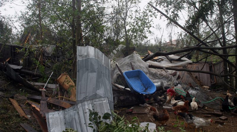 Volunteers are needed as the tornado clean-up crew heads to the swamps. File photo