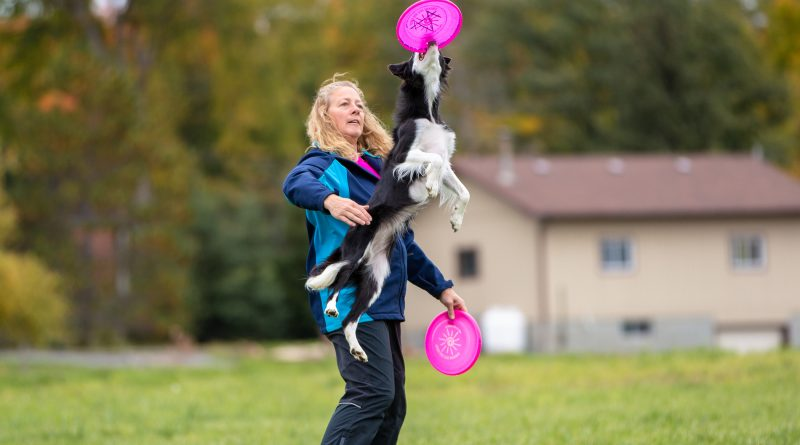 Heather Gallagher, a top Canadian disc dog athlete, had a little fun at KIN Vineyard last weekend. Photo by Paws Button Photography - Sara Benedet