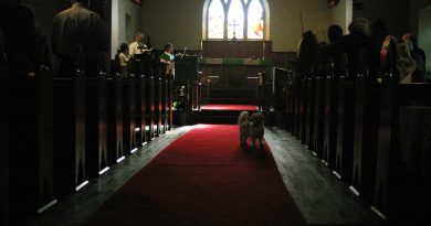 St. Mary's Anglican Church held its annual Blessing of Animals on Sunday, Nov. 4. Photo by Jake Davies