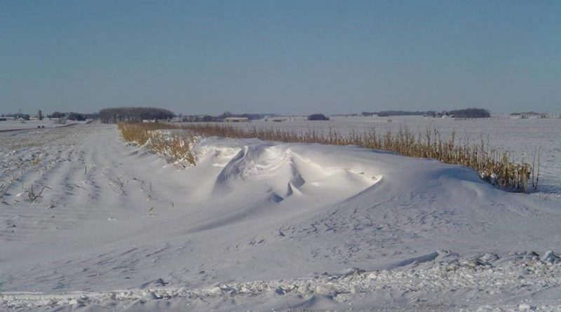 Corn fences can help prevent drifting on rural roads. Photo submitted by the City of Ottawa