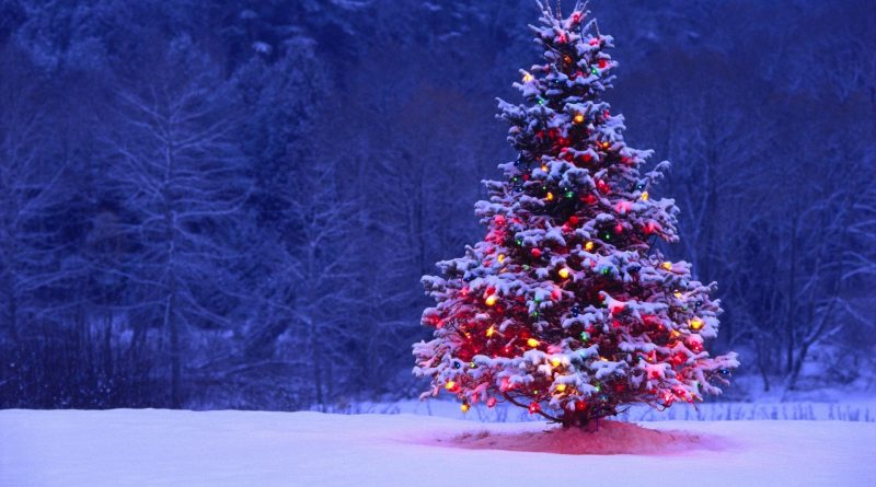 This weekend is packed with holiday themed events all over West Carleton.