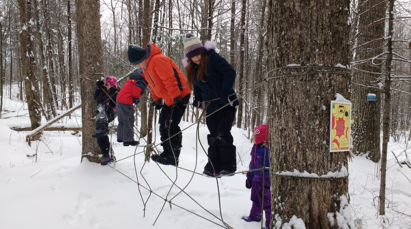 Kids shut off the wi fi and connected with the outdoors during a winter camp at the Carp Ridge EcoWellness Centre. Photo courtesy CREC