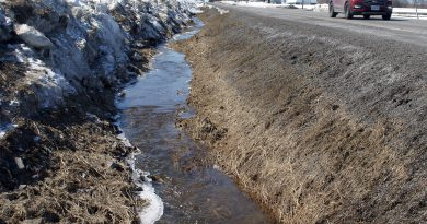 The MVCA expects flows in ditches to increase this weekend like this ditch on the Donald B. Munro Parkway. Photo by Jake Davies