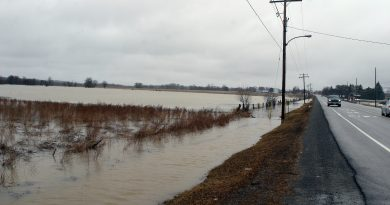 Last Monday, following a day of rain, the Carp River had already burst its banks and swamped this farmer's field nuzzling up against Carp Road. Photo by Jake Davies
