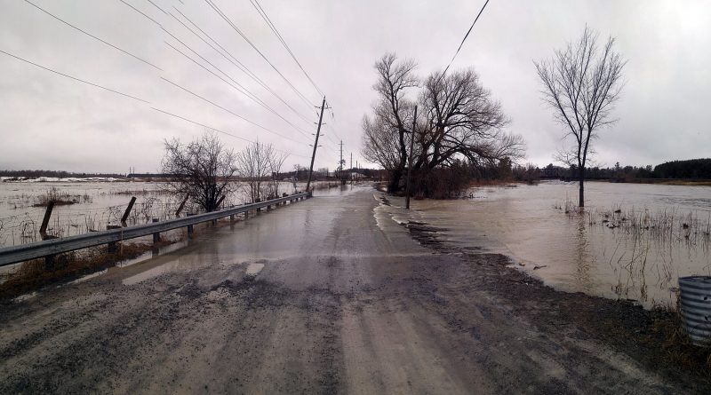 Galetta's island is under water today (April 15) as the Mississippi River broke the banks and is currently washing out Mohrs Road. Photo by Jake Davies