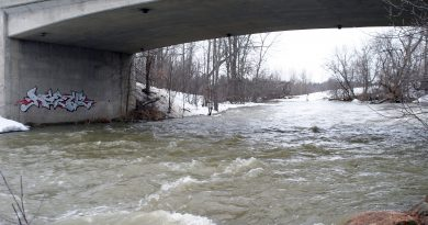The Carp River was flowing fast underneath Carp Road in this photo taken April 7. Photo by Jake Davies