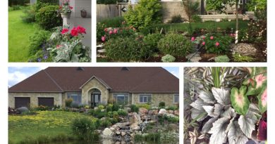 Take the garden tour, June 15. Courtesy Anne Gadbois