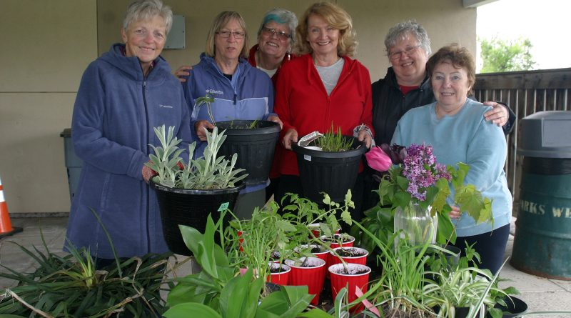 The Corkery Community Garden Club pose with their last customer of the day. From left, Carole Anne Parnell, Jackie Bassett, Marcia Bloom, MP Karen McCrimmon, Eillen Spinney and Iris MacPherson. Photo by Jake Davies