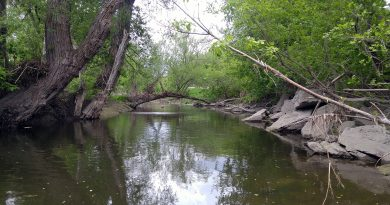 Do some beta testing along the Carp River Sunday. Photo by Jake Davies