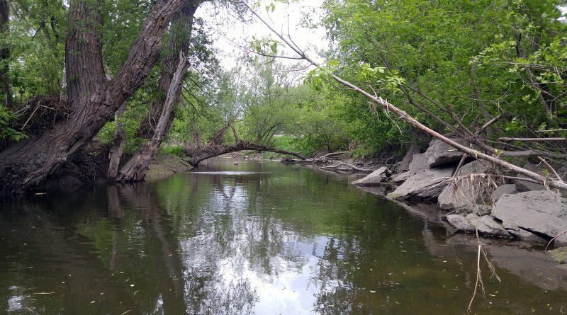 Do some beta testing along the Carp River Sunday. Photo by Jake Davies