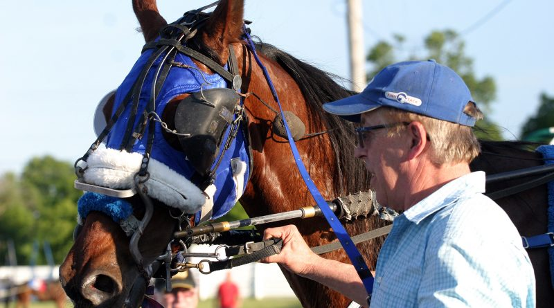 Trainer-owner Wayne Laviolette guides Silverado back to the stable following the horse's June 23 race at Rideau-Carleton Raceway. Photo by Jake Davies