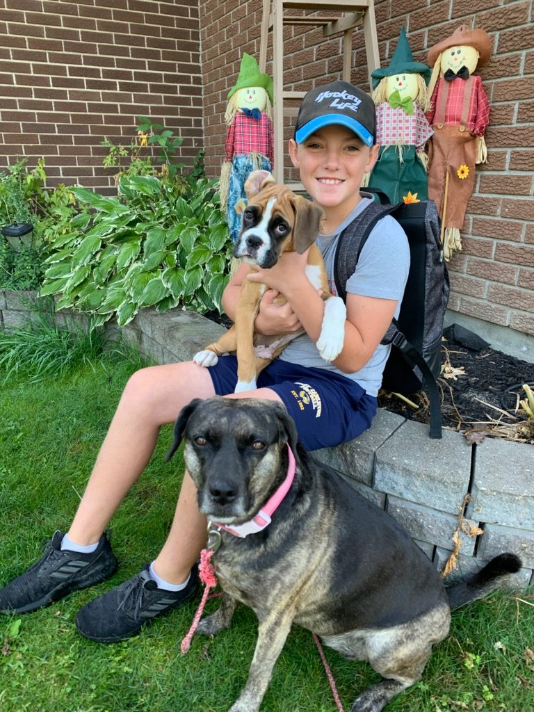 Kinburn's Blake says goodbye to his seemingly knowing puppies before heading to Stonecrest Elementary School this morning. Blake is going in to Grade 7. Rylie, up front, turned seven today and Simcoe is 10-weeks-old. Photo by Shelley Welsh