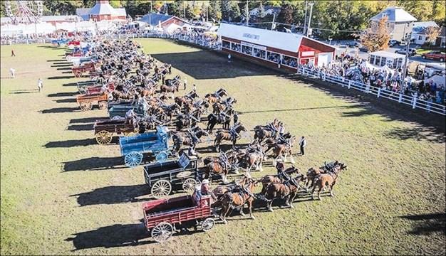 In 2013 a record breaking 25 six-horse hitches filled the Carp Fair's main ring on the fair's 150th anniversary. Courtesy Carp Fair