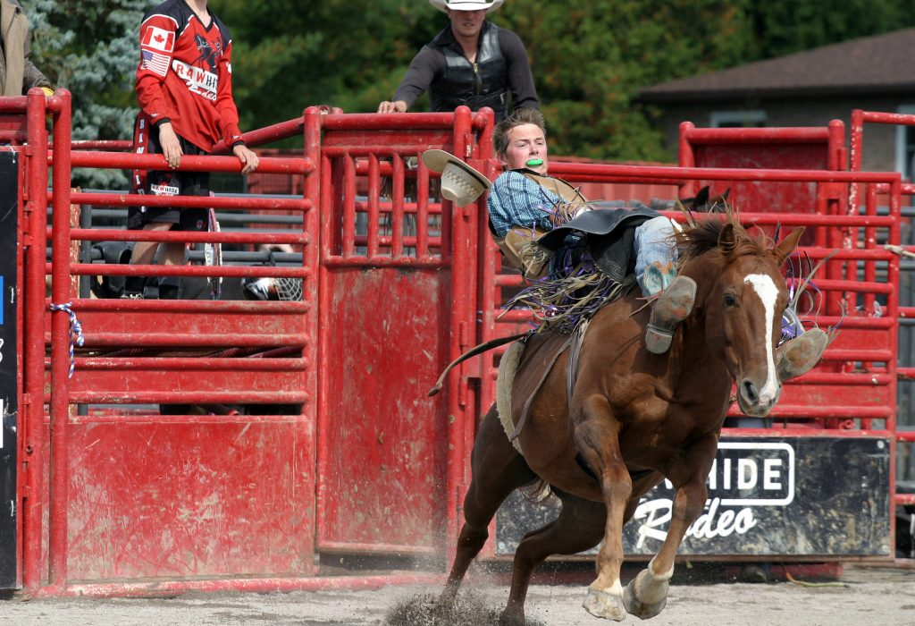 Rawhide Rodeo rider Ben Stolt of Tavistock was unable to hold on for eight seconds. Photo by Jake Davies