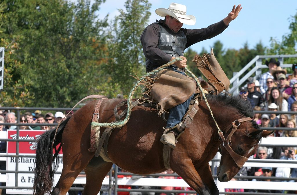 Kirkland Reaney of Metcalfe was one of the competitors at the Rawhide Rodeo. He scored a 62 on this ride. Photo by Jake Davies