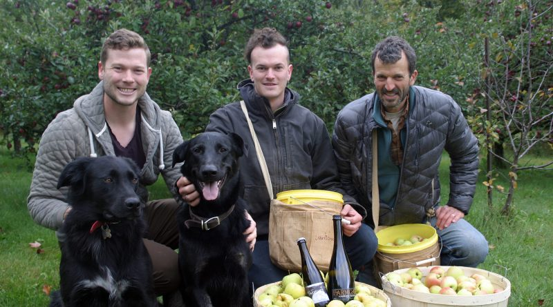 From left, Jacob, Stuart and Jim Davies take a short break from harvest to pose for a photo at the Farmgate Cider orchard near Galetta. Photo by Jake Davies
