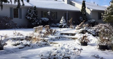 Winter is her at our garden columnist's home so she's got plans to stay busy and current. Photo by Anne Gadbois