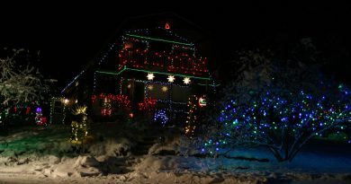 Karen Runtz's Kinburn home is a popular spot for Christmas light tourists. Photo by Jake Davies