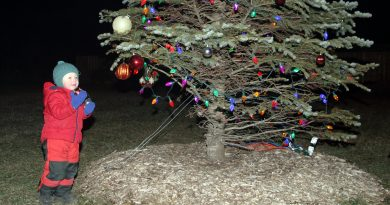 Dunrobin's Weston Braun, 3, helps decorate the Dunrobin Christmas Tree Sunday evening. Photo by Jake Davies