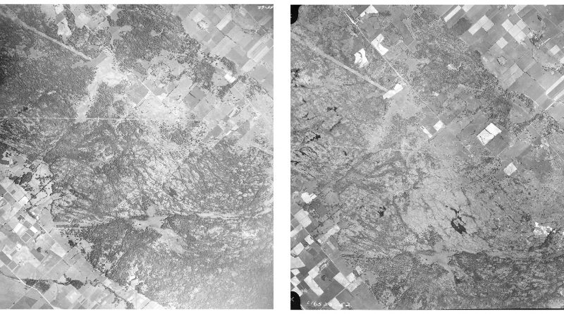Above, the photo on the left was taken in 1955 before the fire, while the photo on the right was taken in 1959 four years after the fire. The stub of what would become Thomas Dolan Parkway is in the lower left corner. Courtesy the National Air Photo Library