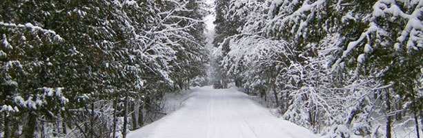 Coun. Eli El-Chantiry says West Carleton snowmobile trails on city owned land are now open. Courtesy WCSTA