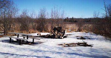 Vandals used Bill Mason Centre picnic tables to fuel an illegal bonfire on Thursday, March 19. Courtesy Joseph Lafreniére