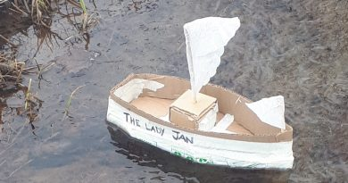 Enter the Carp Village Great Paper Boat Race Time Trials and keep your kids (and kids at heart) entertained during these unprecedented times. Courtesy Janet Howse