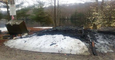 A Burnstown Beach storage shed was completely destroyed by arson last night. Courtesy Facebook