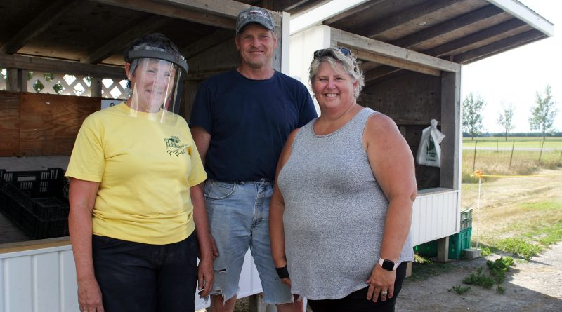 From left, Liz, Brian and Lynn Hudson were kept hopping at the opening day of Hudson's Farm Fresh Produce stand beside the farm on Panmure Road. Photo by Jake Davies
