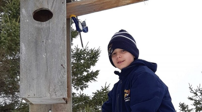 Father, son spruce up duck boxes at Bill Mason centre