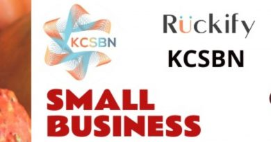 The KCSBN Small Business e-Fair