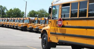 A photo of several school buses.