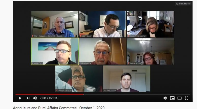 Image of today's ARAC Zoom meeting.