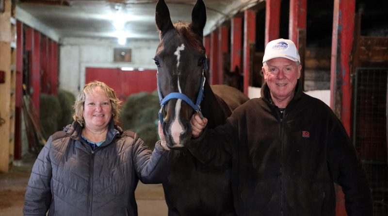 Glenda and James Armitage and their two-year-old filly Dashing Muscle.