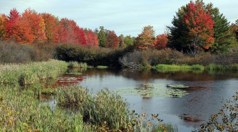 The Carp Hills as photographed from Thomas Dolan Parkway Sept. 25.