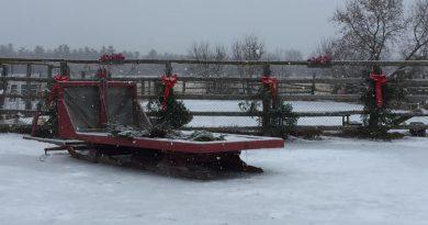 A photo of the Pinto Valley sleigh.