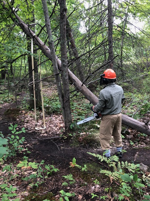 FCH volunteers doing trail work.