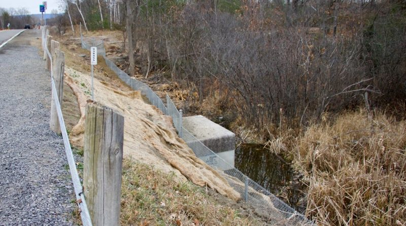 Photo of a turtle fence installed along Thomas A. Dolan Parkway.