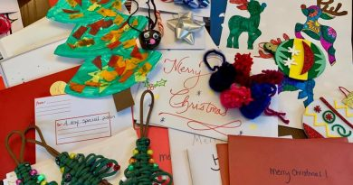 A photo of some of the Christmas cards and crafts.