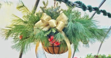 A photo of a hanging Christmas basket.