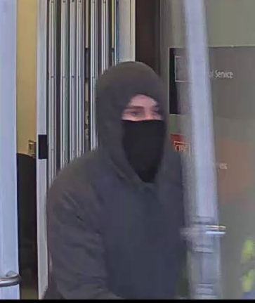 A photo of a suspected thief.