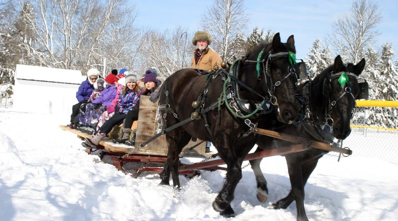 Carp Winter Carnival attendees go on a sleigh ride.