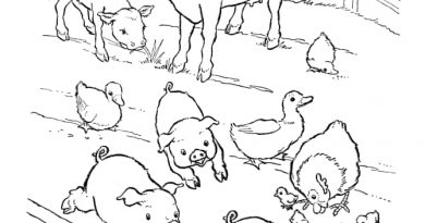 A picture of the colouring contest.