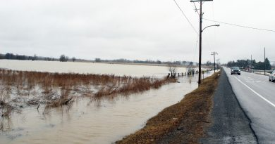 A photo of the Carp River flooding in 2020.