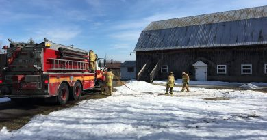 Firefighters attack a grass fire in Kinburn.