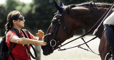 Charlotte Smith works as a groom with horses.