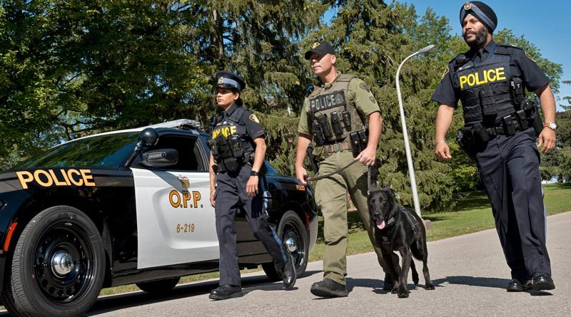 A stock photo of OPP members