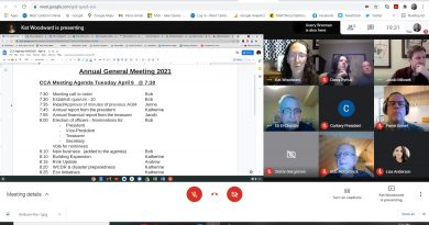A screengrab from Tuesday's CCA AGM.