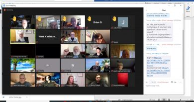 A screengrab of the meeting.